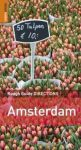 Amsterdam DIRECTIONS - Rough Guide