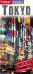 Tokió laminált térkép - Insight